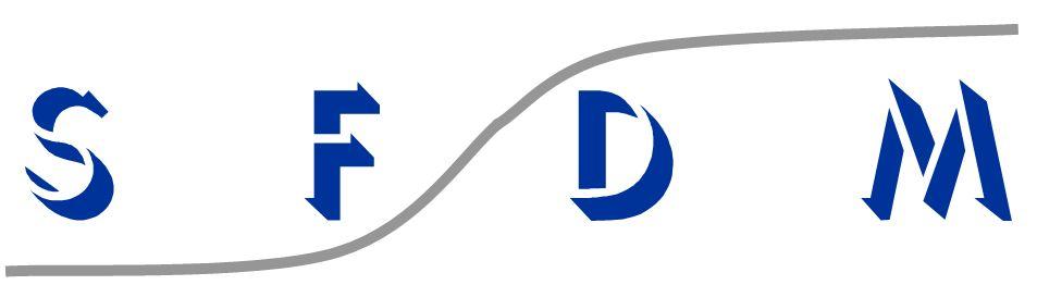 Client Audit incendie Cyrus Industrie - SFDM